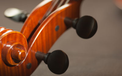 The Violins I Have Owned